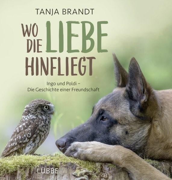 Wo die Liebe hinfliegt | Brandt, 2016 | Buch (Cover)
