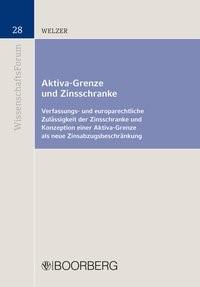 Abbildung von Welzer   Aktiva-Grenze und Zinsschranke   2016