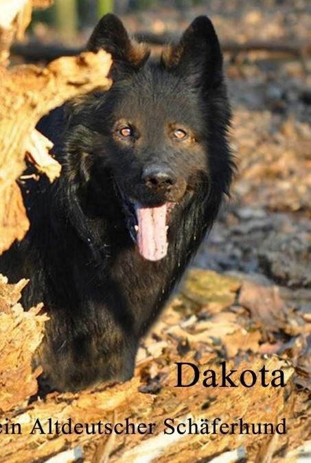 Dakota | Adamczyk, 2016 | Buch (Cover)