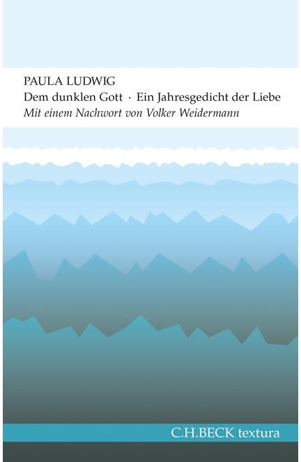 Cover: Paula Ludwig, Dem dunklen Gott