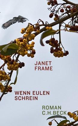 Abbildung von Frame | Wenn Eulen schrein | 2012 | Roman