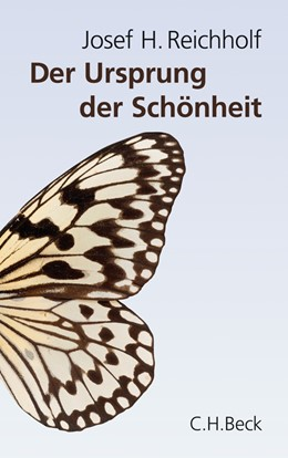 Abbildung von Reichholf | Der Ursprung der Schönheit | 2011 | Darwins größtes Dilemma