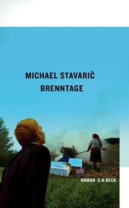 Abbildung von Stavaric   Brenntage   2011   Roman