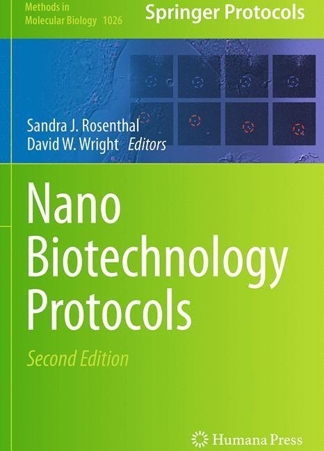 Abbildung von Rosenthal / Wright   NanoBiotechnology Protocols   Softcover reprint of the original 2nd ed. 2013   2016