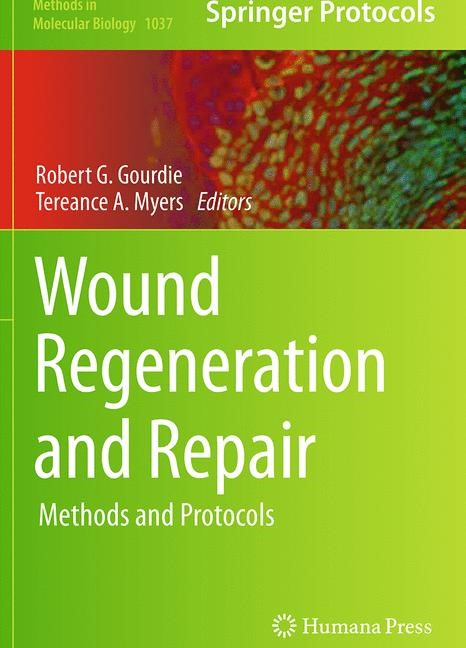 Abbildung von Gourdie / Myers   Wound Regeneration and Repair   Softcover reprint of the original 1st ed. 2013   2016