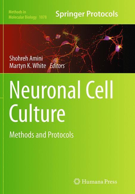 Abbildung von Amini / White   Neuronal Cell Culture   Softcover reprint of the original 1st ed. 2013   2016
