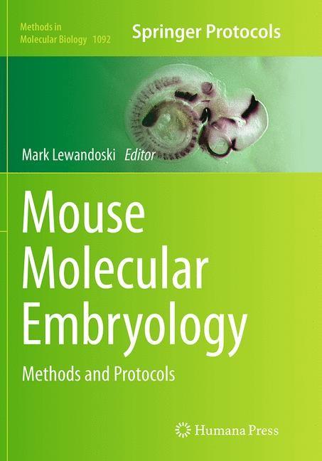 Abbildung von Lewandoski | Mouse Molecular Embryology | Softcover reprint of the original 1st ed. 2014 | 2016