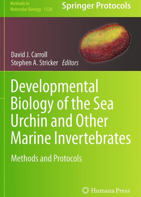 Abbildung von Carroll / Stricker | Developmental Biology of the Sea Urchin and Other Marine Invertebrates | Softcover reprint of the original 1st ed. 2014 | 2016