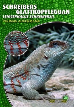 Abbildung von Ackermann | Schreibers Glattkopfleguan | 2006 | Leiocephalus Schreibersii. Art...