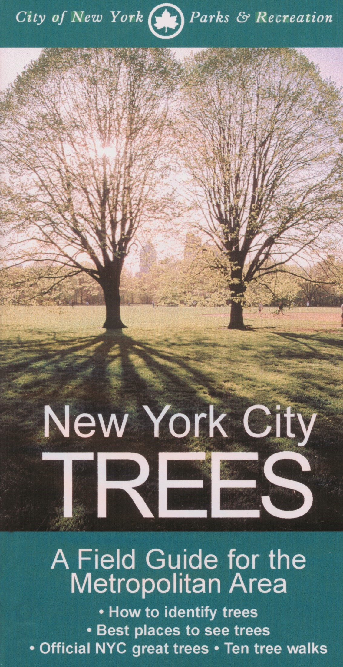 Abbildung von Barnard | New York City Trees | 2002