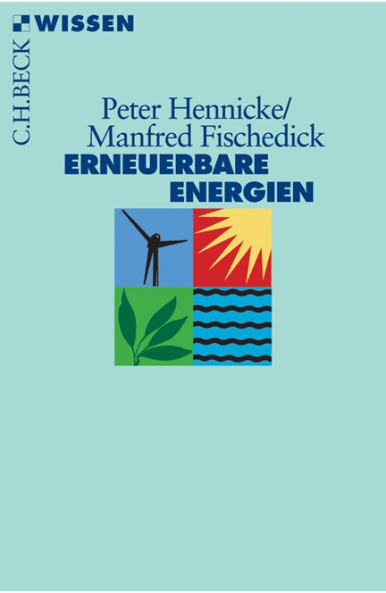 Cover: Manfred Fischedick|Peter Hennicke, Erneuerbare Energien