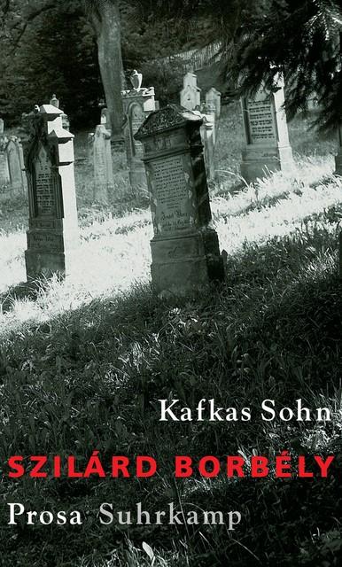 Kafkas Sohn | Borbély, 2017 | Buch (Cover)