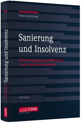 Abbildung von Sanierung und Insolvenz   2017   Rechnungslegung und Beratung i...