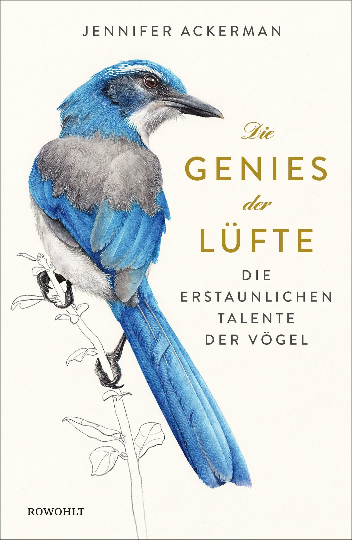 Die Genies der Lüfte | Ackerman, 2017 | Buch (Cover)