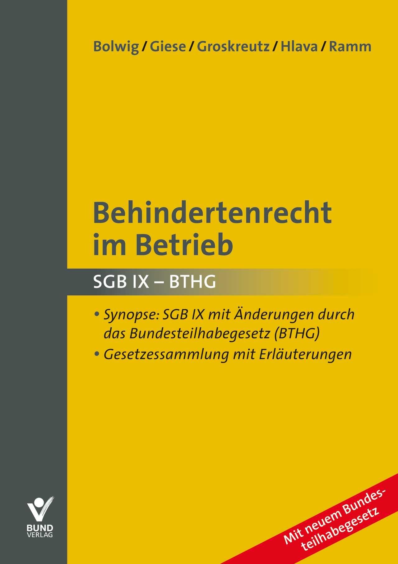 Behindertenrecht im Betrieb | Bolwig / Giese / Groskreutz / Hlava / Ramm, 2017 | Buch (Cover)