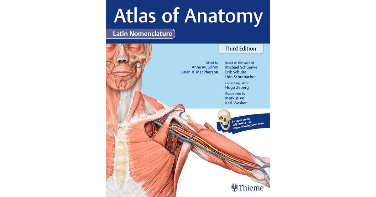 Atlas Of Anatomy 3e Latin Gilroy 3 Auflage 2017 Buch Beck