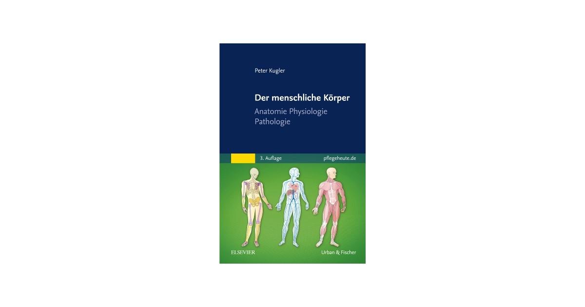 Der menschliche Körper | Kugler | 3. Auflage, 2017 | Buch | beck-shop.de