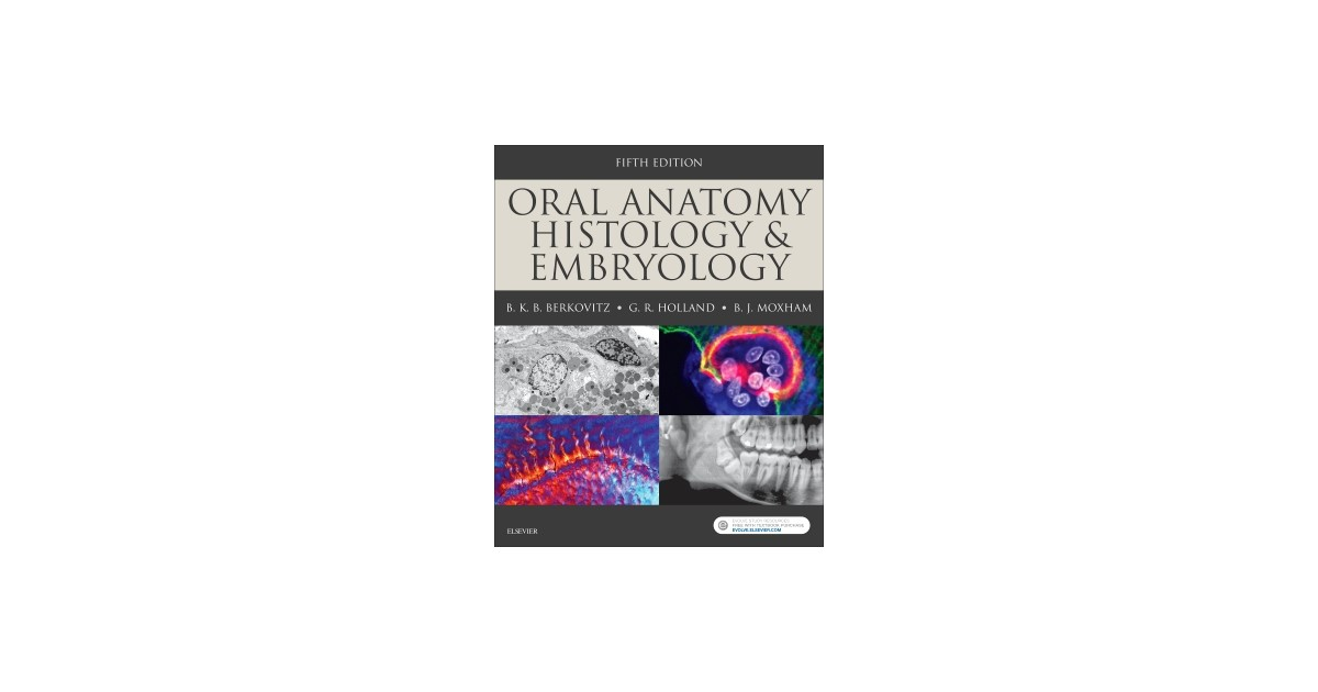 Oral Anatomy Histology And Embryology Berkovitz Holland