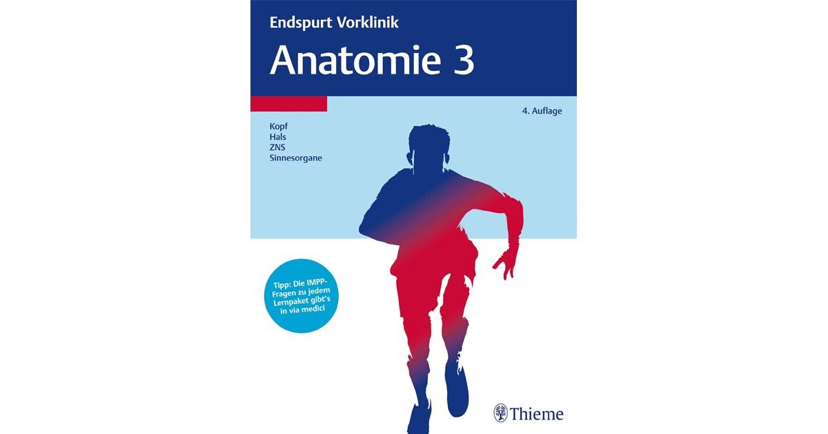 Charmant Fragen über Anatomie Und Physiologie Ideen - Anatomie und ...