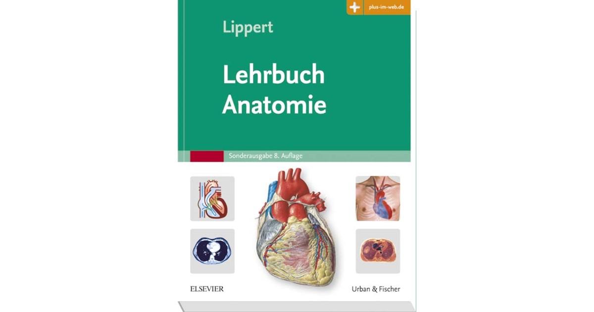 Lehrbuch Anatomie | Lippert | 8. Auflage, 2017 | beck-shop.de