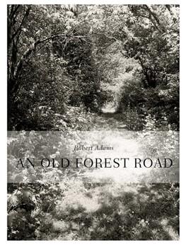 Abbildung von Robert Adams. An Old Forest Road | 1. Auflage | 2017 | beck-shop.de