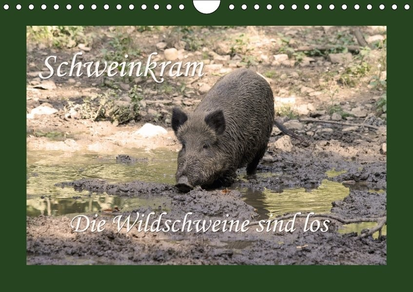 Schweinkram - Die Wildschweine sind los (Wandkalender 2018 DIN A4 quer) | Lindert-Rottke | 5. Edition 2017, 2017 (Cover)