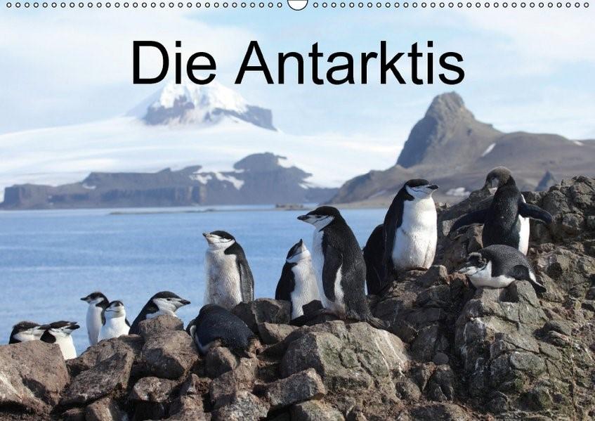 Die Antarktis (Wandkalender 2018 DIN A2 quer) Dieser erfolgreiche Kalender wurde dieses Jahr mit gleichen Bildern und aktualisiertem Kalendarium wiederveröffentlicht. | Brack | 5. Edition 2017, 2017 (Cover)