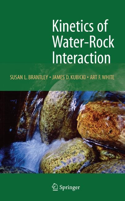 Kinetics of Water-Rock Interaction | Brantley / Kubicki / White, 2007 | Buch (Cover)