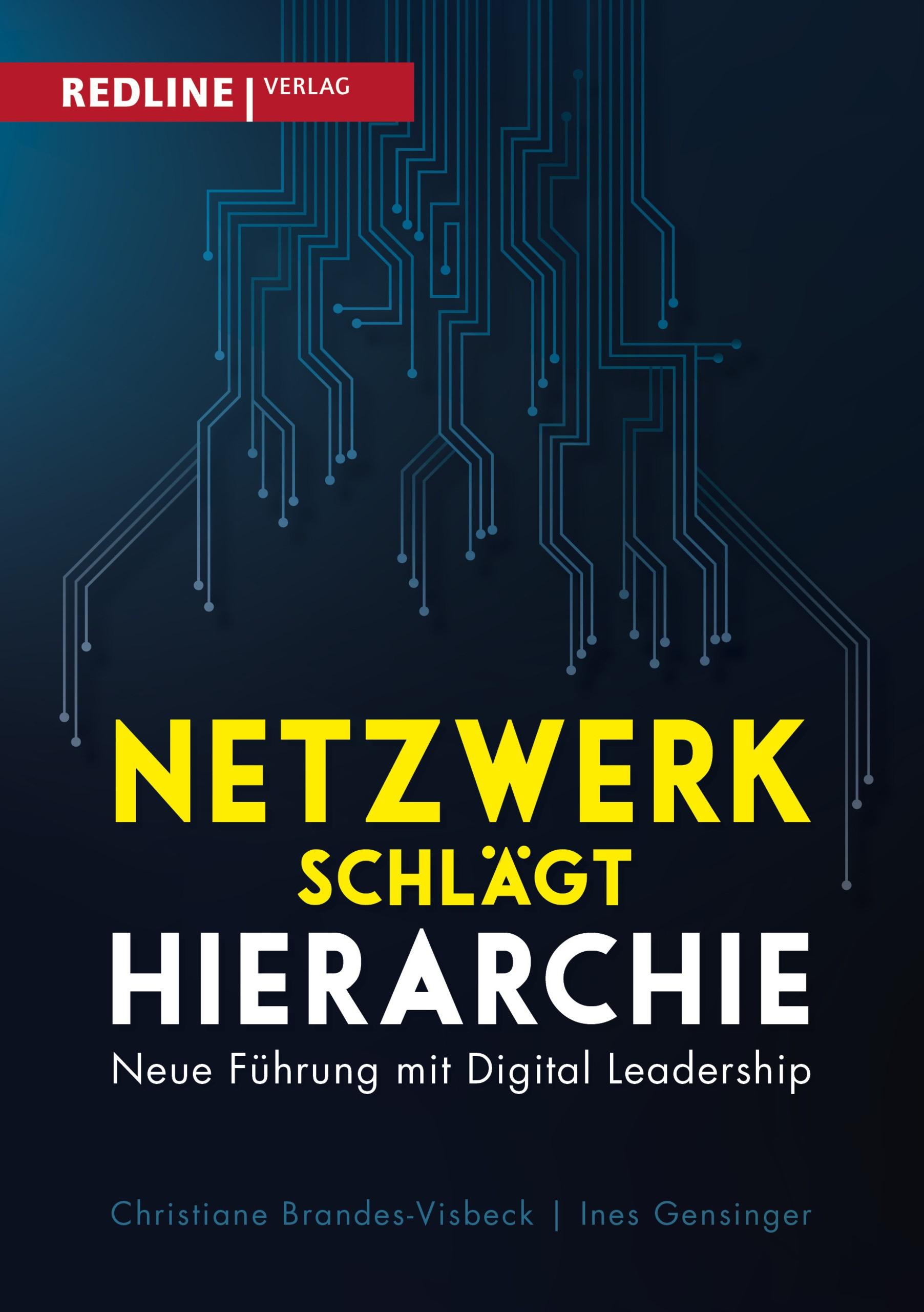 Netzwerk schlägt Hierarchie | Brandes-Visbeck / Gensinger, 2017 | Buch (Cover)