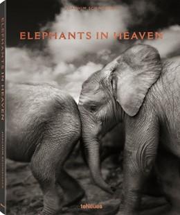 Abbildung von Schmeisser | Elephants in Heaven | 2017