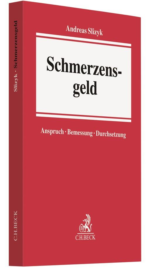 Schmerzensgeld | Slizyk, 2017 | Buch (Cover)