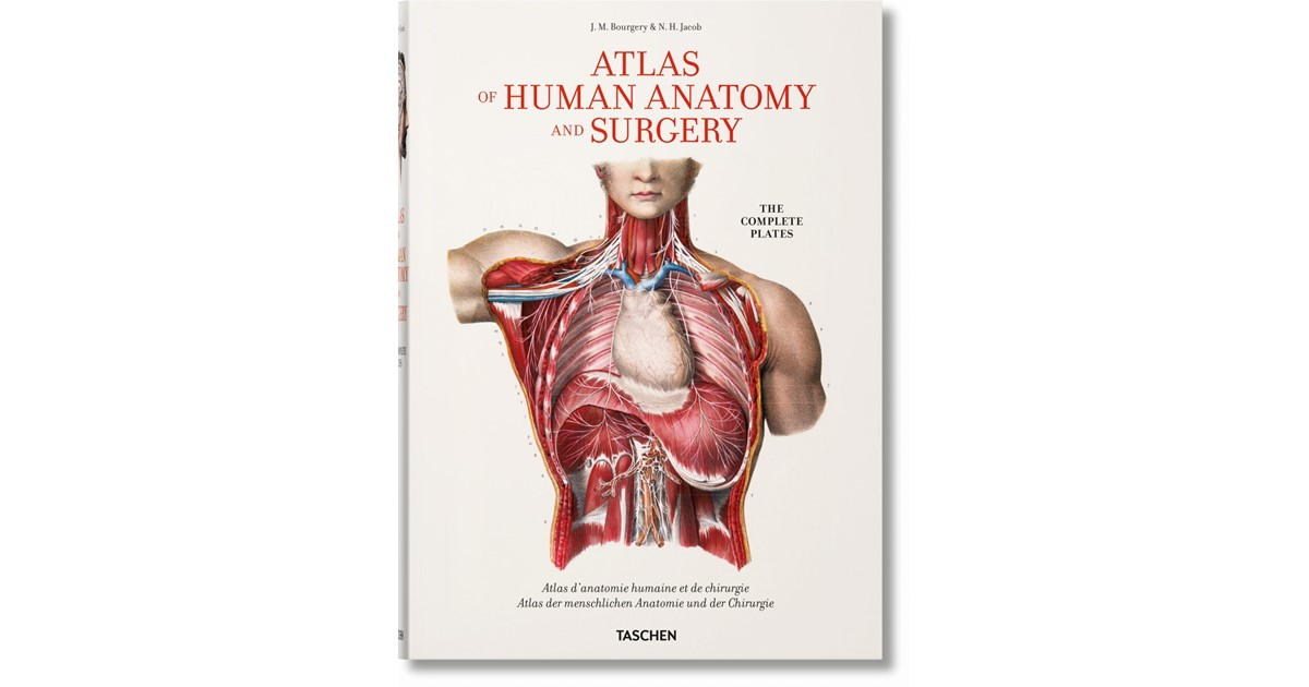 Bourgery Atlas Of Human Anatomy And Surgery Le Minor Sick 2017