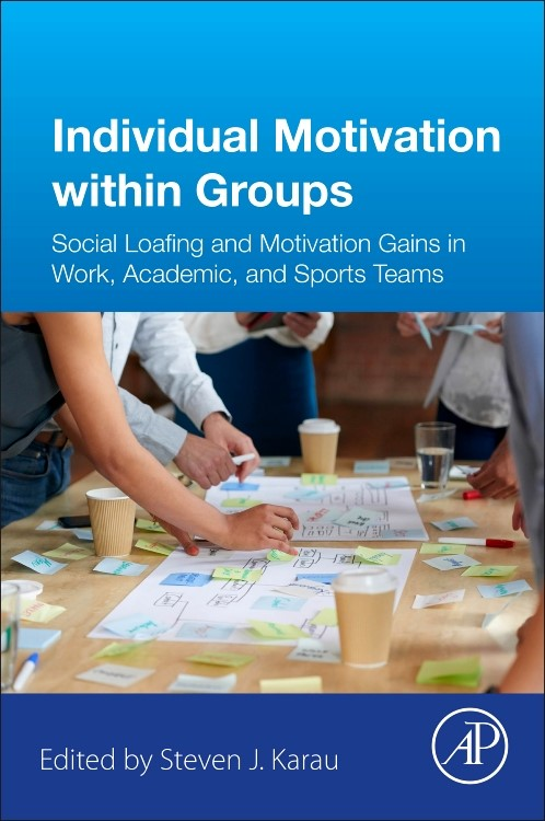 Individual Motivation within Groups | Karau, 2017 | Buch (Cover)
