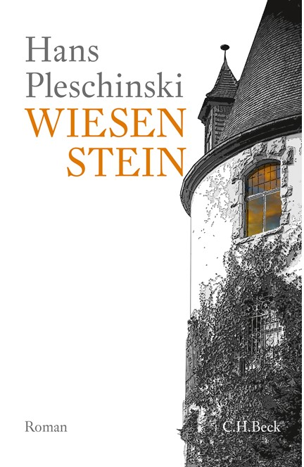 Cover: Hans Pleschinski, Wiesenstein