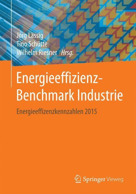 Energieeffizienz-Benchmark Industrie | Lässig / Schütte / Riesner, 2017 | Buch (Cover)