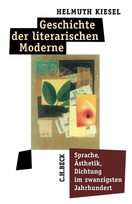 Cover: Helmuth Kiesel, Geschichte der literarischen Moderne