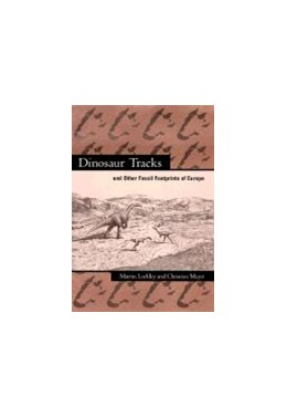 Abbildung von Lockley / Meyer | Dinosaur Tracks and Other Fossil Footprints of Europe | second edition | 2000