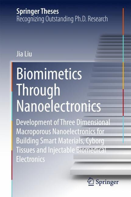 Biomimetics Through Nanoelectronics | Liu, 2017 | Buch (Cover)