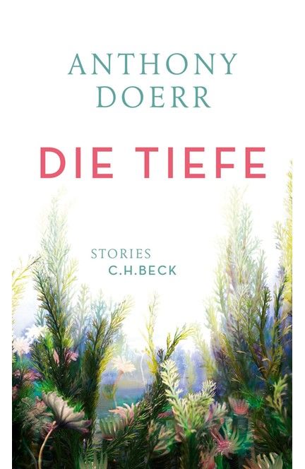 Cover: Anthony Doerr, Die Tiefe