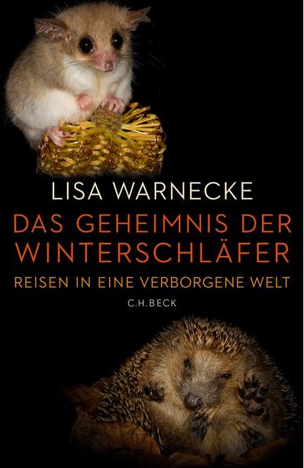 Cover: Lisa Warnecke, Das Geheimnis der Winterschläfer