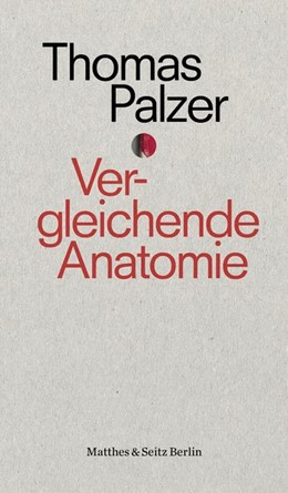 Abbildung von Palzer   Vergleichende Anatomie   1. Auflage   2018   beck-shop.de