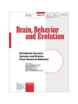 Abbildung von Wullimann / Grothe / Straka / Behrend / ten Donkelaar | Vertebrate Sensory Systems and Brains: From Genes to Behavior | 2017 | 8th European Conference on Com...