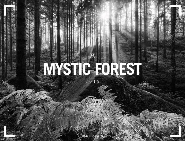 Mystic Forest 2019, 2018 (Cover)