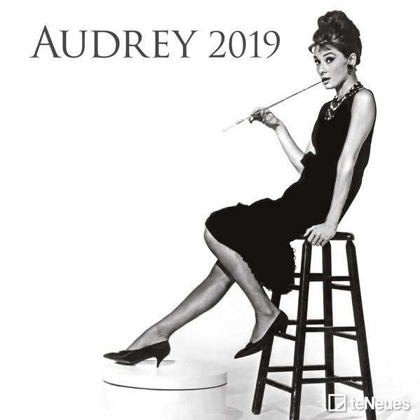 2019 Audrey Grid Calendar, 2018 | Buch (Cover)