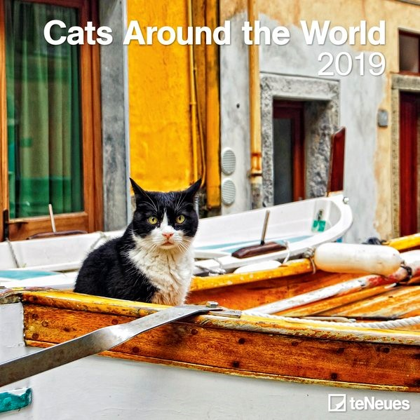2019 Cats around the World Grid Calendar, 2018 | Buch (Cover)