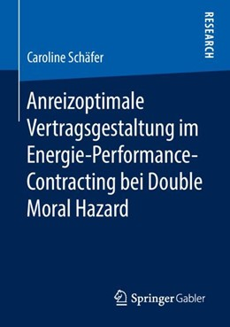 Abbildung von Schäfer   Anreizoptimale Vertragsgestaltung im Energie-Performance-Contracting bei Double Moral Hazard   2018