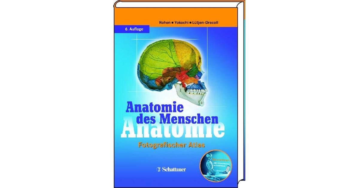 Anatomie des Menschen | Rohen / Yokochi / Lütjen-Drecoll | 6., Aufl ...