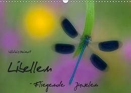 Abbildung von Böhme | Fliegende Juwelen - Libellen (Wandkalender 2019 DIN A3 quer) | 5. Edition 2018 | 2018 | Libellen - die Schönheit Flieg...