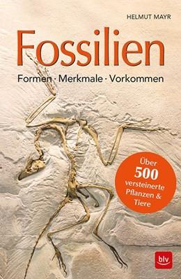 Abbildung von Mayr | Fossilien | 2018 | Formen, Merkmale, Vorkommen Üb...