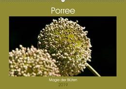 Abbildung von Bölts   Porree - Magie der Blüten (Wandkalender 2019 DIN A2 quer)   3. Edition 2018   2018   Wundervolle Detailaufnahmen de...